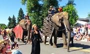 5th Jul 2019 - Elephants From Renaissance Fair