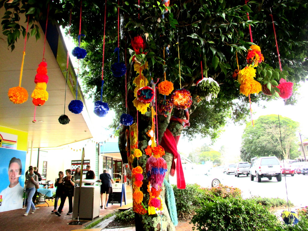 Street decorations at Maleny Knitfest today by 777margo