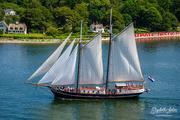 1st Jul 2019 - Sailboat
