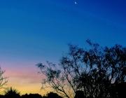 6th Jul 2019 - Crescent Moon