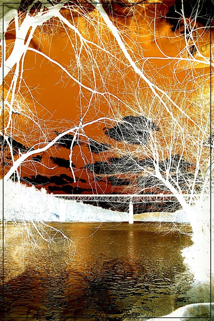 Delaware River Foolery by olivetreeann