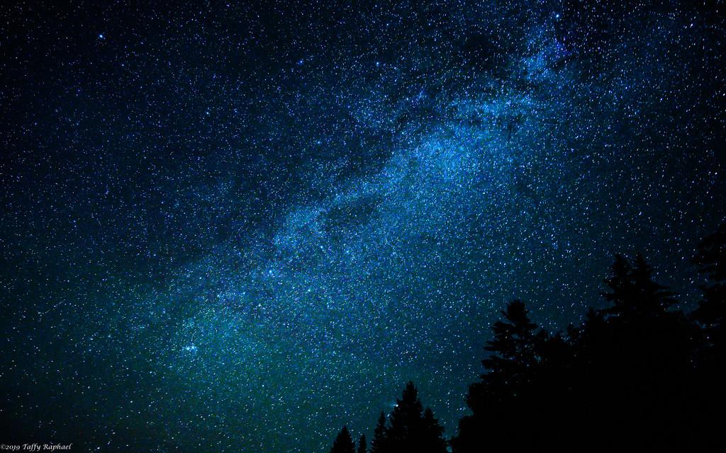 Starry Starry Night by taffy