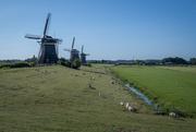 4th Jul 2019 - 17th Century Windmills