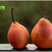 Red pair of pears