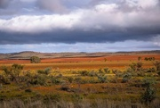 5th Jul 2019 - Colours of the Flinders Ranges
