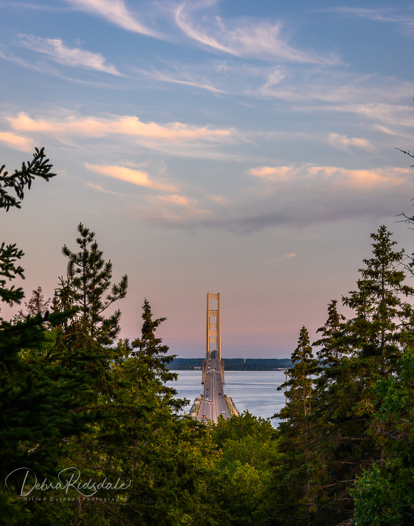 The Mighty Mac by dridsdale