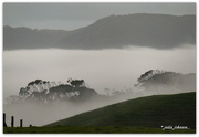 9th Jul 2019 - Misty Hills..