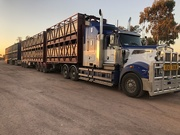 7th Jul 2019 - Road train