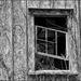 Slanted Window by olivetreeann