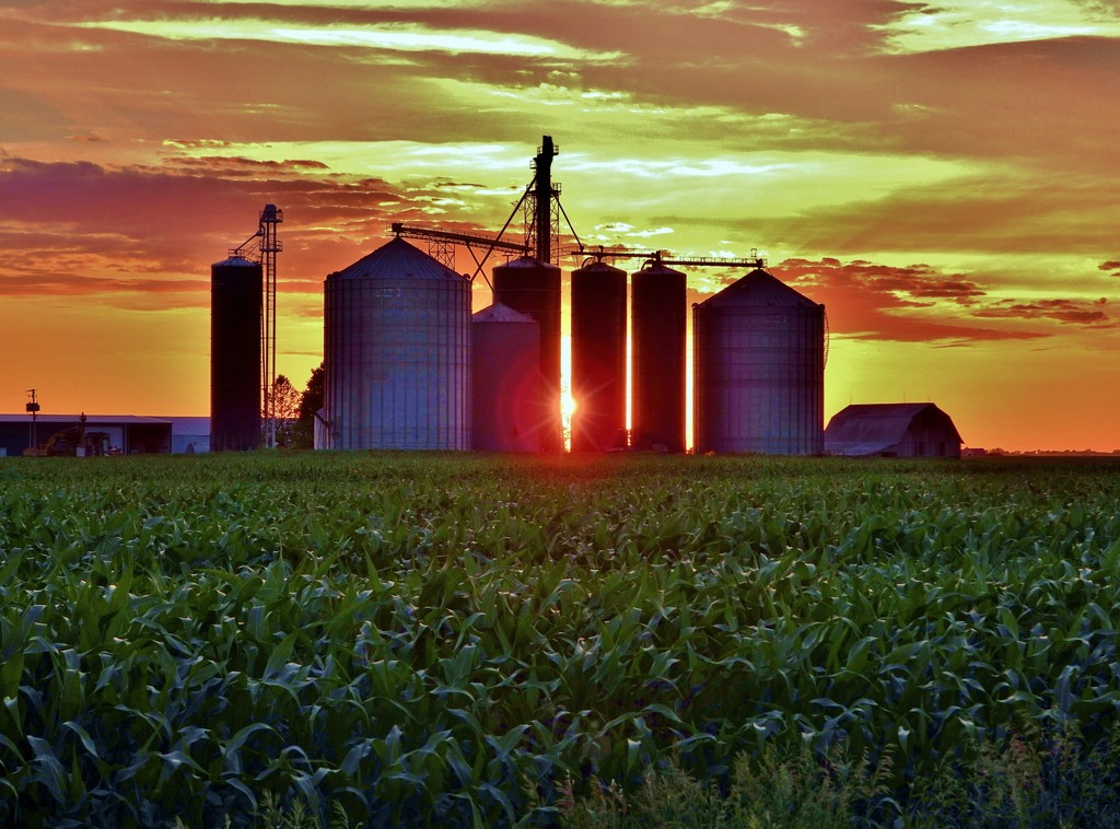 This Is Iowa USA by lynnz