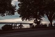 7th Jul 2019 - Summer afternoon—summer afternoon