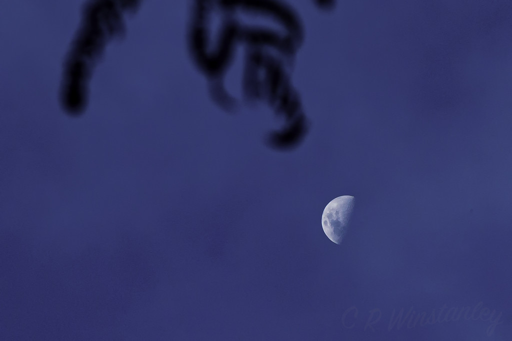 Afternoon Moon by kipper1951