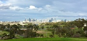 9th Jul 2019 - Melbourne CBD - from a distance!