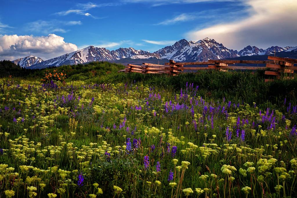 Colorado Garden by exposure4u