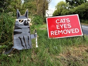 11th Jul 2019 - Cats eyes removed