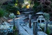 7th Jul 2019 - Garden path