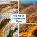 The Art of Yellowstone Algae