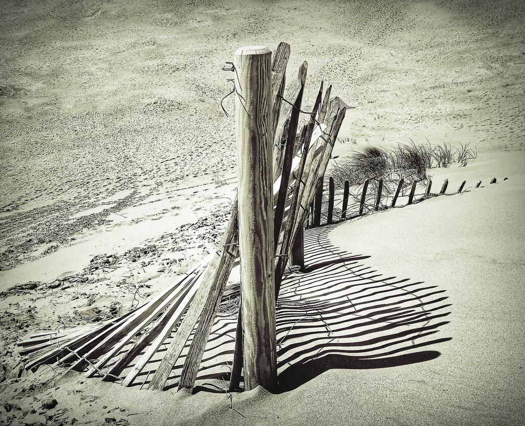 Herding sand by jack4john