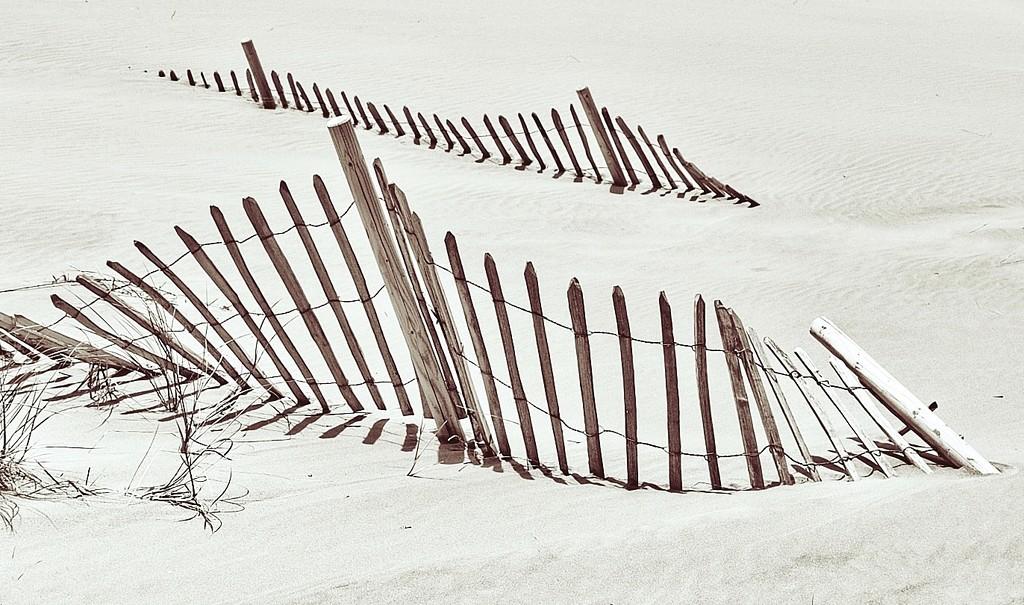 Herding Sand 2 by jack4john