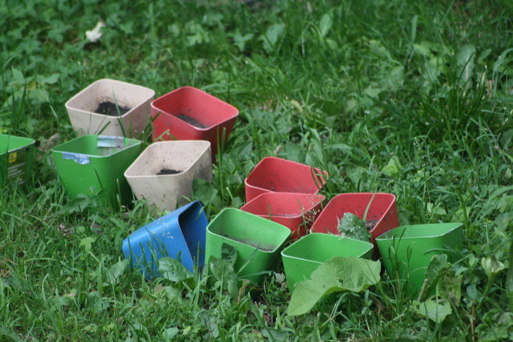No flowers planted anywhere - just containers by bruni