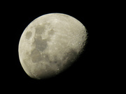 12th Jul 2019 - moon must view on black