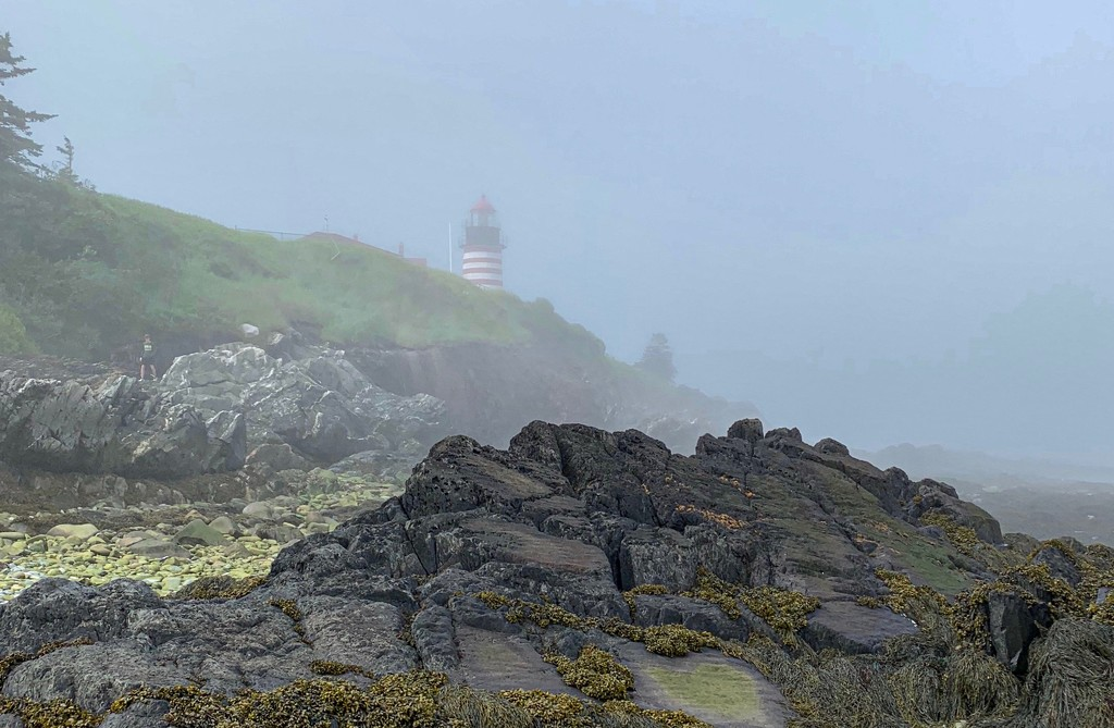 West Quoddy Head Lighthouse, S. Lubec, Maine by berelaxed