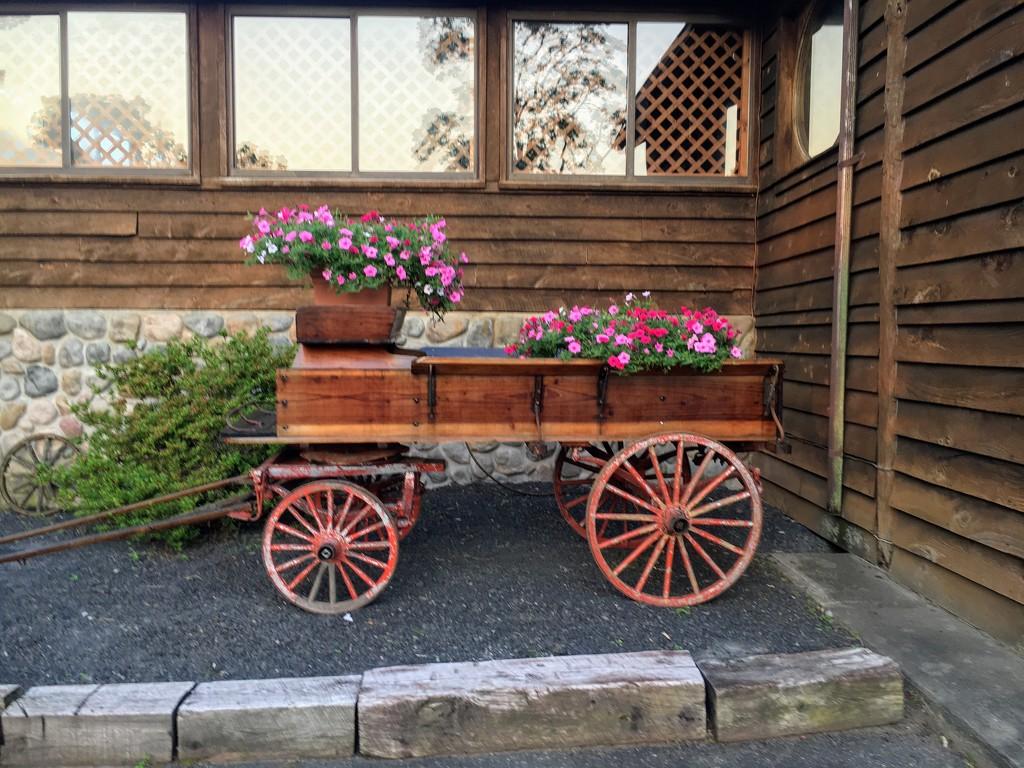 Flower Cart by wilkinscd
