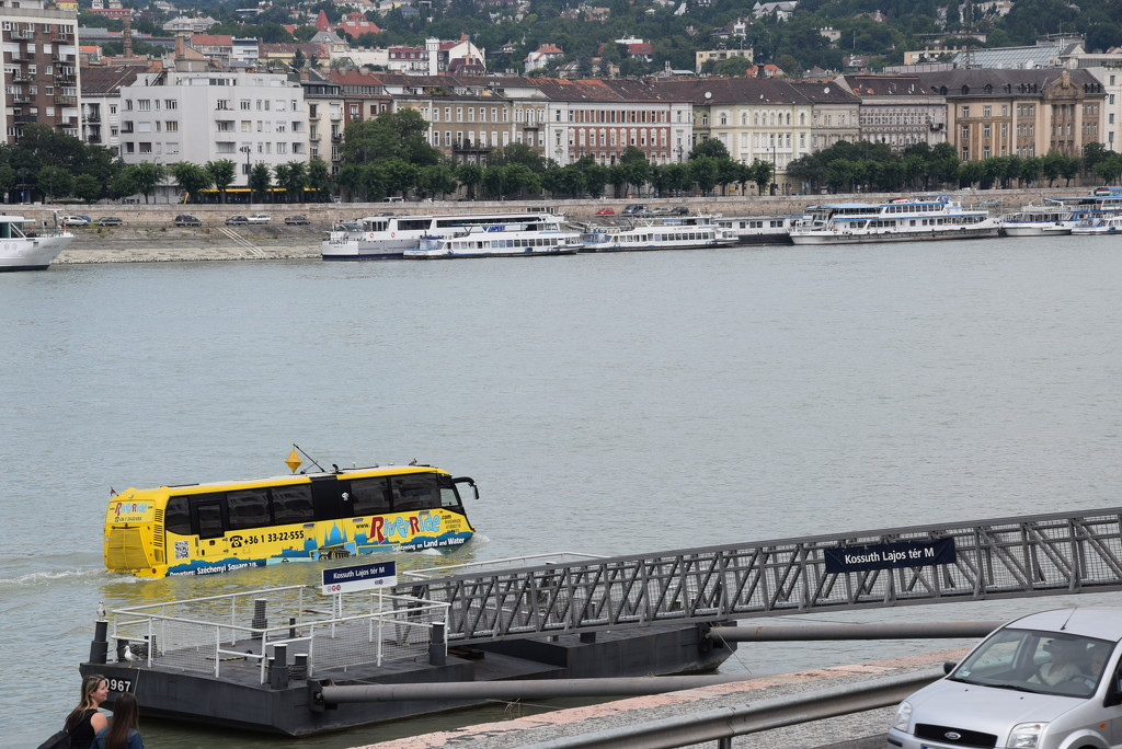 Bus on the Danube by kork