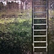 13th Jul 2019 - Climb yourself to higher grounds