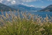 15th Jul 2019 - 181 - Lake Maggiore from Stresa