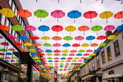 16th Jul 2019 - Under my umbrellas