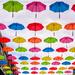 Under my umbrellas 2