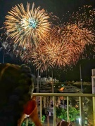 14th Jul 2019 - Watching the fireworks.