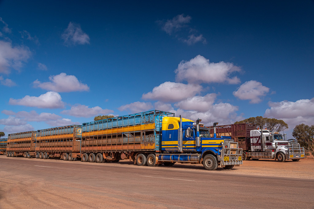 Road Trains by teodw