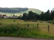 16th Jul 2019 -  Northumberland National Park