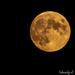 Full moon last night
