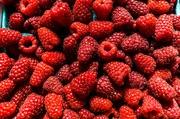 17th Jul 2019 - It's raspberry time in Runcorn
