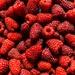 It's raspberry time in Runcorn