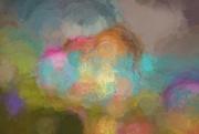 20th Jul 2019 - Garden abstract