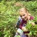 Huckleberry picking