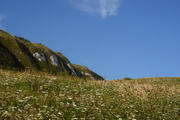 20th Jul 2019 - Cliffs and Cow Parsley