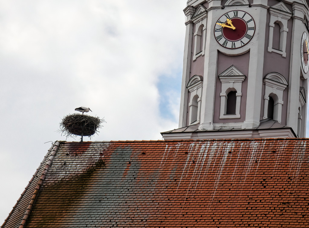 Stork nest on one of the Churches. by ludwigsdiana