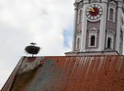 21st Jul 2019 - Stork nest on one of the Churches.