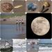 50th anniversary moon landing by jacqbb