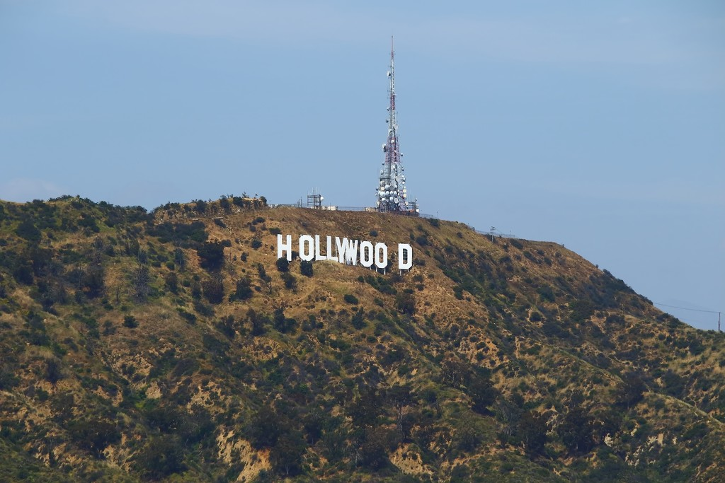 Hollywood sign by blueberry1222