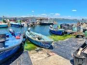 23rd Jul 2019 - Little blue boats.