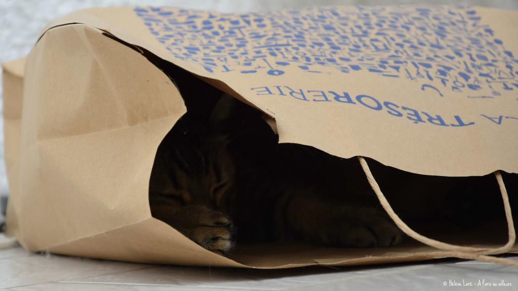nap in a bag by parisouailleurs
