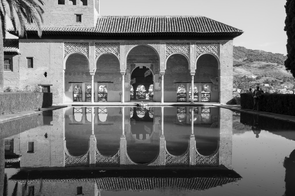 Alhambra reflections Framed by brigette
