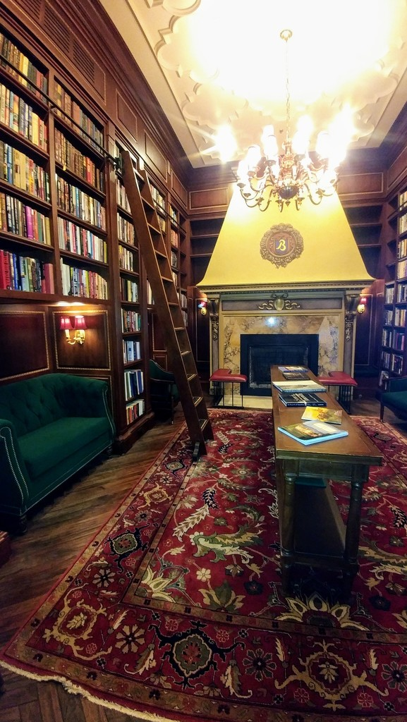 Old Tyme Library  by harbie