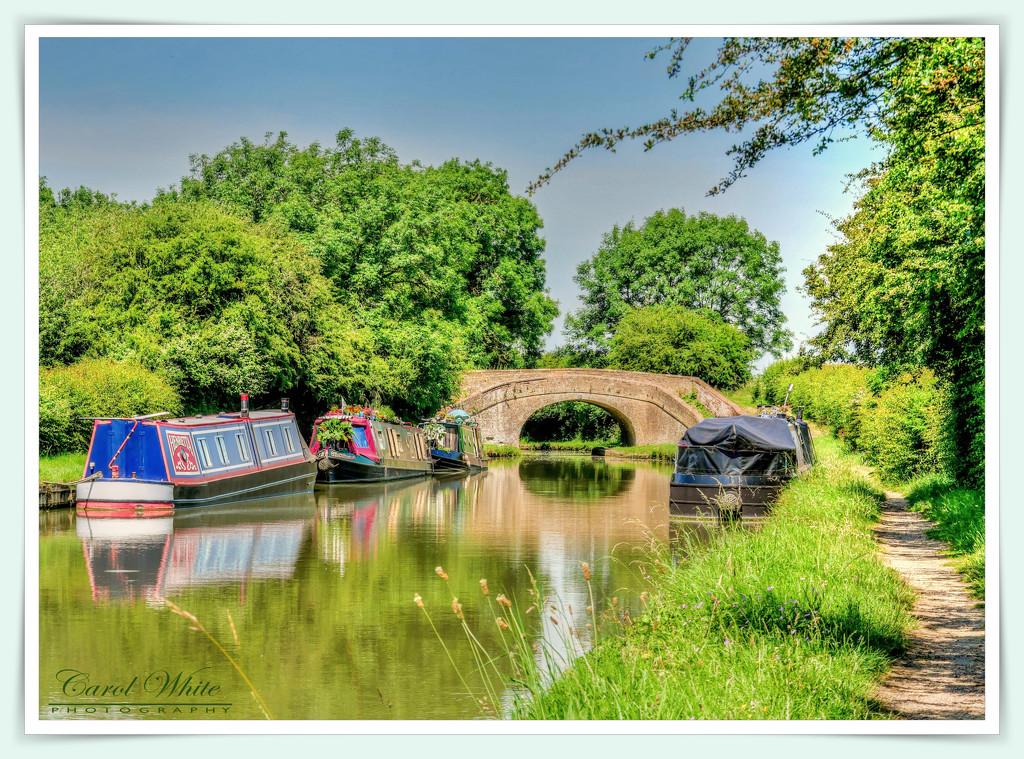 Tranquil Canal Life by carolmw